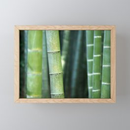 Relaxing Bamboo Framed Mini Art Print