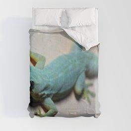 Look me in the Eye Comforters