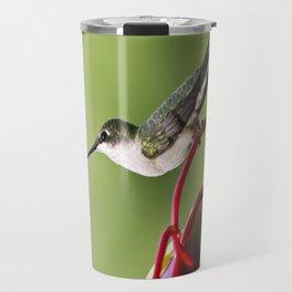 Hummingbird on Feeder Travel Mug