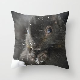 Black haired squirrel eating in the snow closeup Throw Pillow