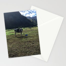 Azores = Cows Stationery Cards