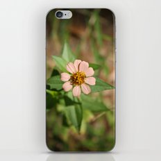 he loves me NOW iPhone & iPod Skin