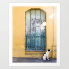 Waiting White Dog Art Print