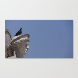 Pigeon on top Canvas Print
