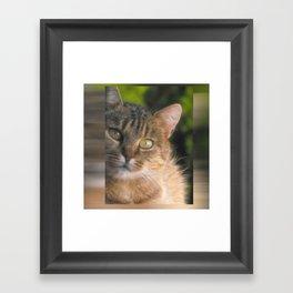 My little cat Framed Art Print