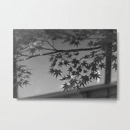 Chuson-ji, Japan. Metal Print