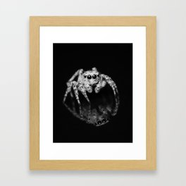 Spider Reflection Framed Art Print