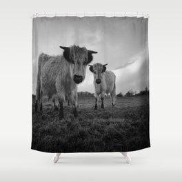 High Park Cow Mono Shower Curtain