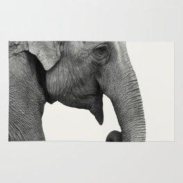 Elephant Animal Photography Rug