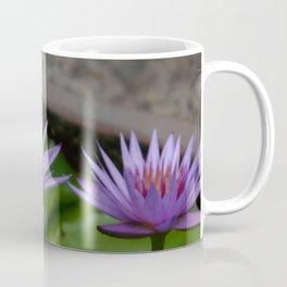 Nymphaea 'Rhonda Kay' VI Coffee Mug
