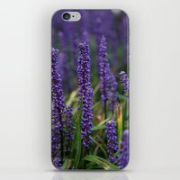 lavender iPhone & iPod Skins featuring Lavender by Tracy66