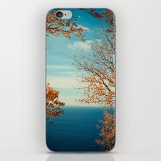 The View From the Top iPhone & iPod Skin