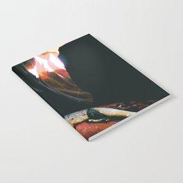 Inanna Notebook