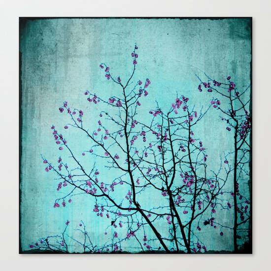 pink berries Canvas Print