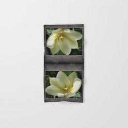 Tulip named Perles de Printemp Hand & Bath Towel