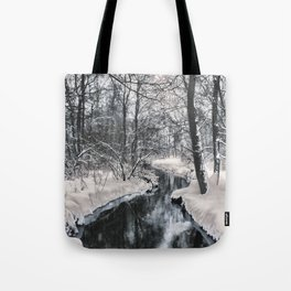 Almost frozen (3\4-BW, HDR) Tote Bag