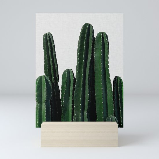 Cactus I by paperpixelprints