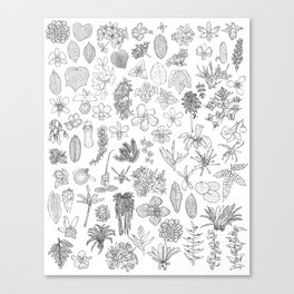 Florality: floral·reality Canvas Print