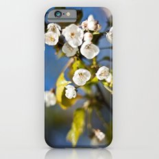 Spring is Near iPhone 6s Slim Case