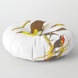 Nuttall's Starling, Yellow-headed Troopial, Bullock's Oriole Floor Pillow