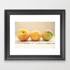 Other 3 appricots Framed Art Print