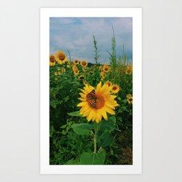 Ladies Love Sunflowers Art Print