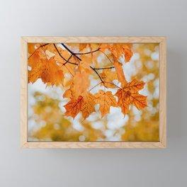 Orange Autumn Leaves Framed Mini Art Print