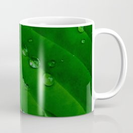 Green Leaf Macro Water Droplets Coffee Mug