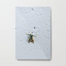 Bee Thing Metal Print