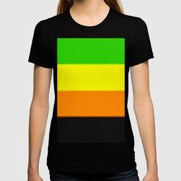 Aromantic Pride Flag T-shirt