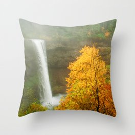 Waterfall into Fall Throw Pillow
