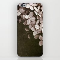 hydrangea iPhone & iPod Skins featuring hydrangea by inourgardentoo