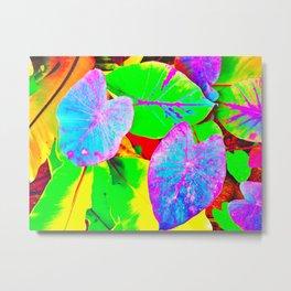 Rainbow Kalo Metal Print