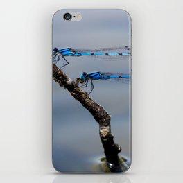 Damselflies iPhone Skin