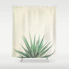 Haworthia Shower Curtain