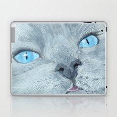 Blossom the Ragdoll Cat Laptop & iPad Skin
