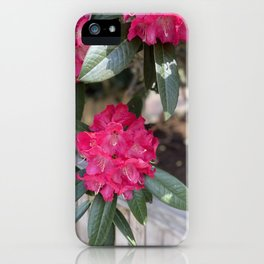 Wild Flowers In Marbella iPhone Case