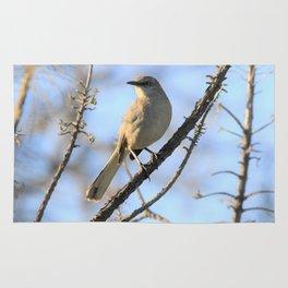 Bird Photography -Mockingbird - I Finally Found You Rug