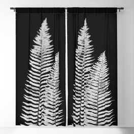 Pacific Northwest Silver Fern Forest Adventure Blackout Curtain