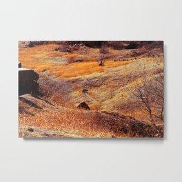 Valley in orange Metal Print
