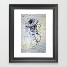 Jellyfish in the South Pacific Framed Art Print