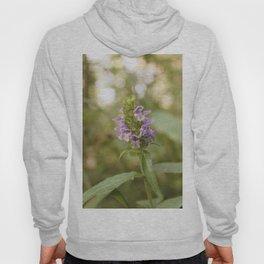 Purple Flowers in Sunrise (Vintage) Hoody