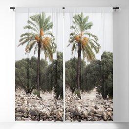 Date Palm in Megiddo Blackout Curtain