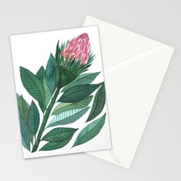 King protea watercolor Stationery Cards