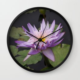 Rosy lavender water lily Wall Clock