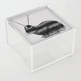 Fuzzy Reception Acrylic Box