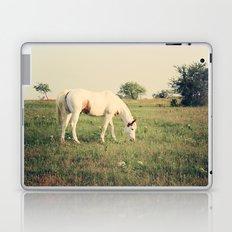 It's not a unicorn! It's a white horse! Laptop & iPad Skin