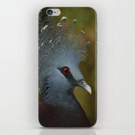 Victoria Crowned Pigeon iPhone Skin