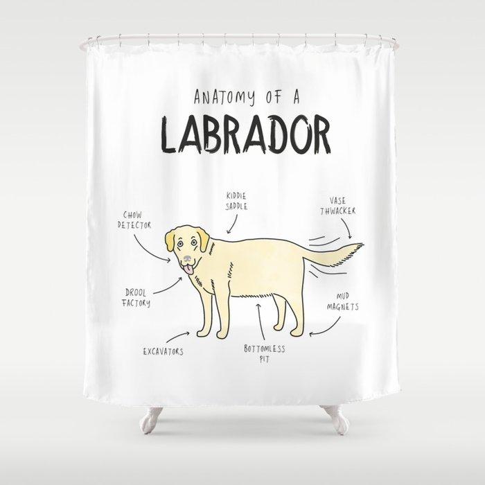 Anatomy Of A Labrador Shower Curtain