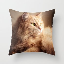 Portrait of Mr. Cesare in the sunset light. Throw Pillow